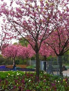 Primavera em Hamburgo